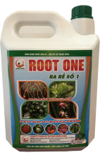 ROOT ONE: RA RỄ SỐ 1